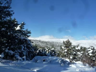 Ladera Mojonavalle-Bosques Canencia;viajes verano viajes puente del pilar ruta senderismo